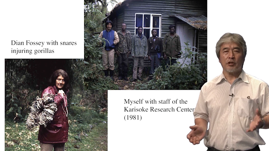 Dian Fossey with snares injuring gorillas. President Yamigawa with staff of the Karisoke Research Center.